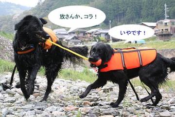 0423mizuki1_6tnp_2