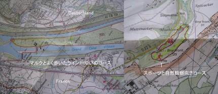 Maptnp9