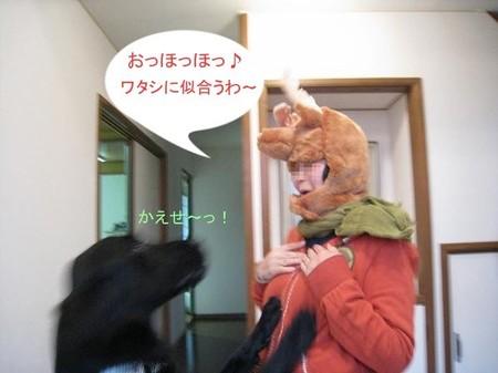 1031chiku_4tnp_2