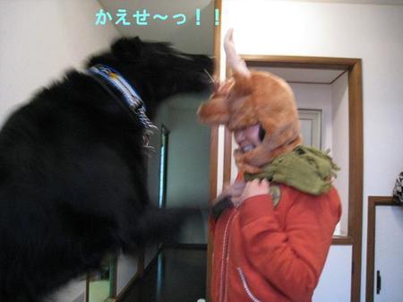 1031chiku_5