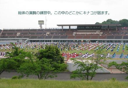 0527park1