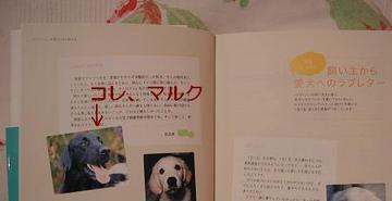 Book0226a