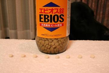 Ebios1130_4