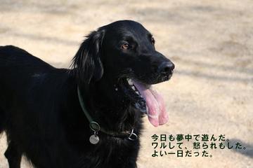 Inari0212_2tnp
