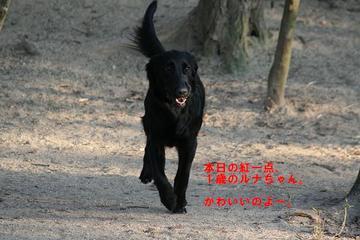 Inari0212a_8tnp