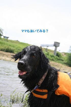 Kizugawa612_22tnp