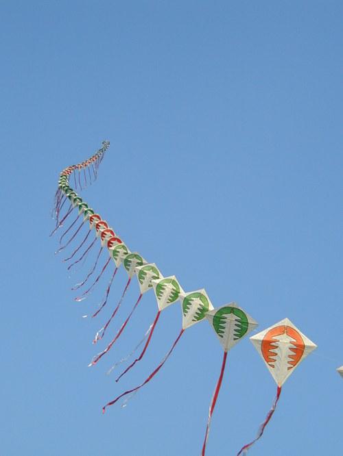 連凧 連凧 平城宮跡 マルクと散歩に行った先で、「なら凧の会」の人たちが凧を... キナコの写真